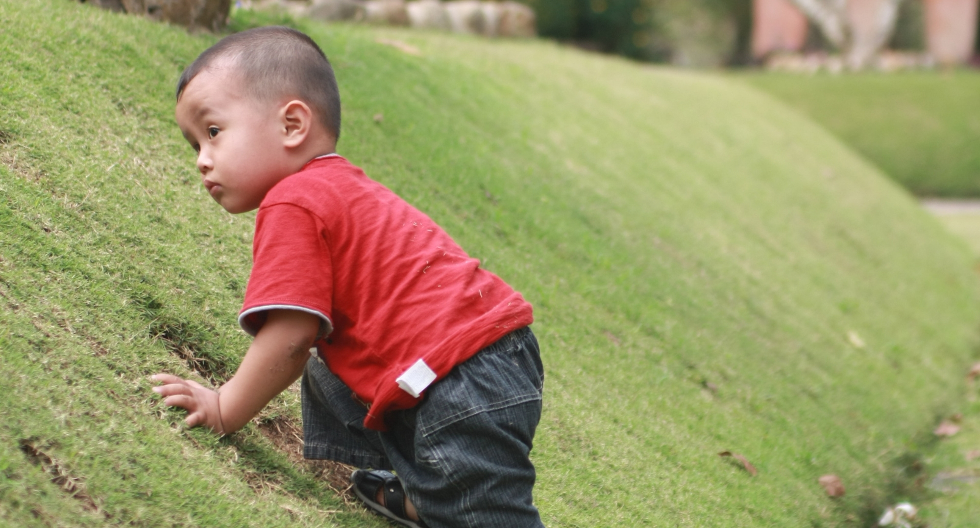 image of boy climbing hill for NH ACEs report (adverse childhood experiences)
