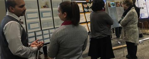 chhs research celebration attendees discussing posters