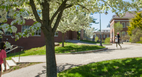 UNH students walking across campus in the spring