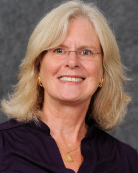Debra A. Gottel, Clinical Assistant Professor, Nursing