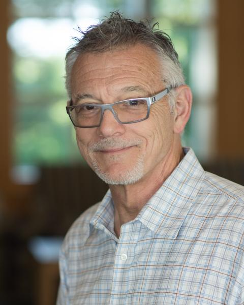 Donald A. Robin, Professor, Communication Sciences and Disorders