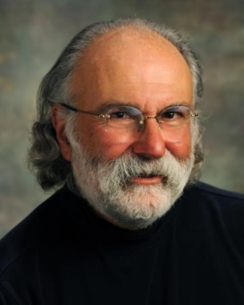 Mark D. Moses, Clinical Associate Professor, Human Development and Family Studies