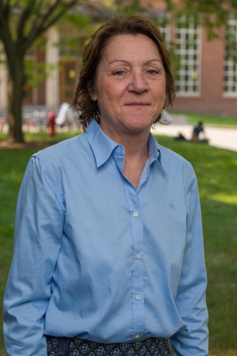 Pamela P. DiNapoli, Associate Professor, Nursing