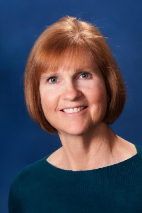 Donna M. Pelletier, Clinical Associate Professor, Nursing