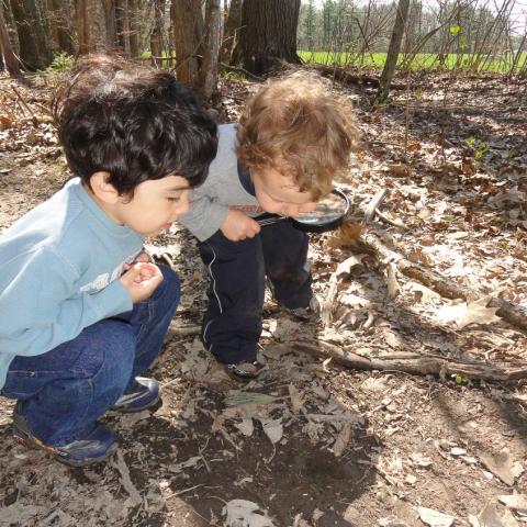 two toddlers exploring the woods